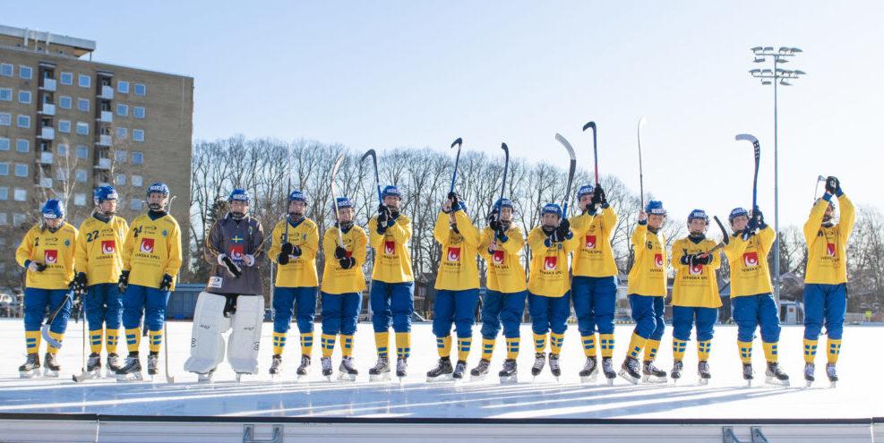 Sveriges damer, bandy-VM
